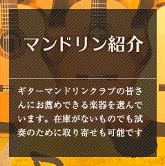 マンドリン紹介